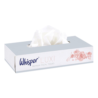 Professional Tissue Wipes - Box of 100