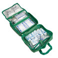 70 Piece Home/Car First Aid Kit In Green Roll Bag