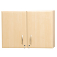Double Wall-Mounted Dressing Cabinet
